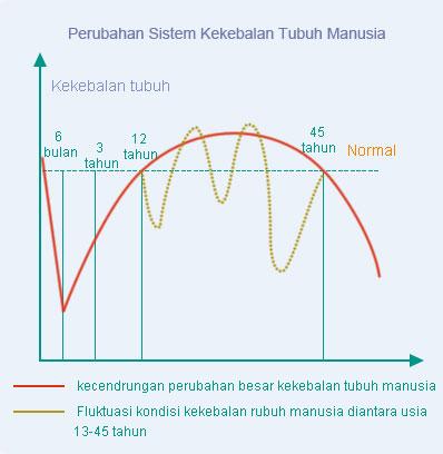 Fluktuasi kondisi kekebalan rubuh manusia diantara usia 13-45 tahun