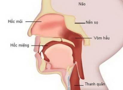 ung thư mũi họng